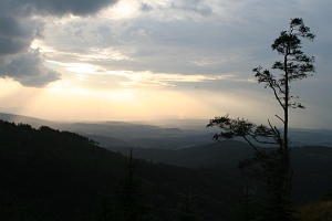 The Jizera Mountains: Evening way down from the top of Smrk